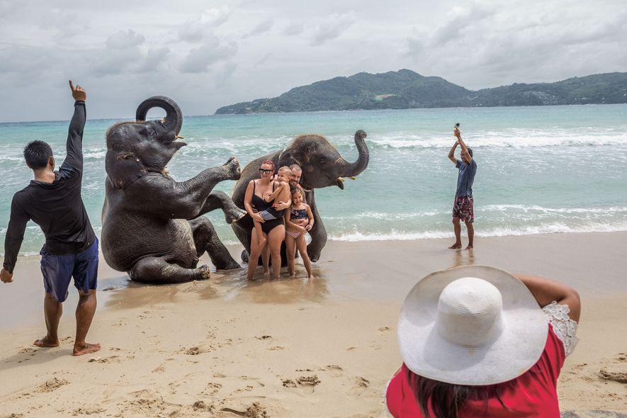 Uma família se diverte em sessão de fotos com elefantes juvenis em Lucky Beach, em Phuket. ...