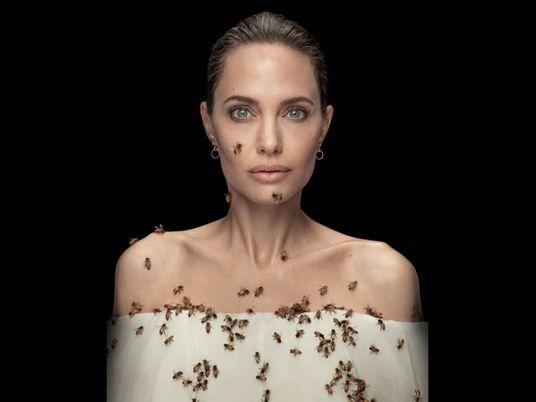 Angelina Jolie apoia as abelhas – e as apicultoras – como guardiãs do meio ambiente