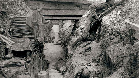 A guerra de trincheiras foi um componente crucial do cenário europeu na Primeira Guerra Mundial. Nesta ...