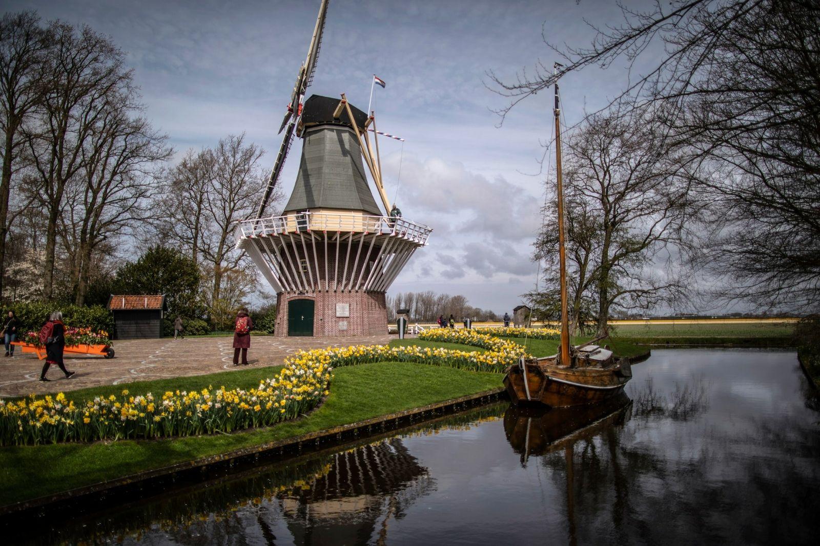 Visitantes passeiam pelo jardim Keukenhof de Lisse, que permitiu aos turistas visitação por meio de reserva ...