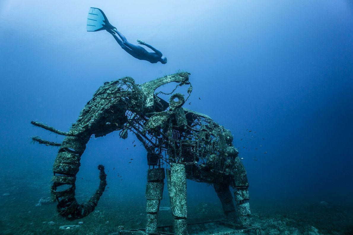 DAHAB Com recifes de coral ameaçados pelo mundo, recifes artificiais podem beneficiar ecossistemas aquáticos, até os artísticos, ...