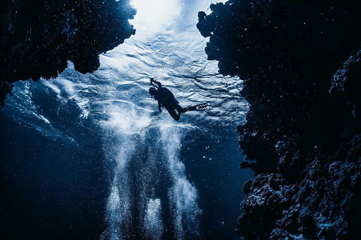"""DAHAB """"Mergulhar mudou minha perspectiva de muitas coisas"""", escreve Grey. """"Toda a superfície deixa de existir. Só ..."""